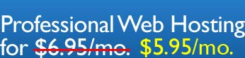 Professional Web Hosting